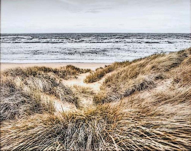beach_dunes_900_2